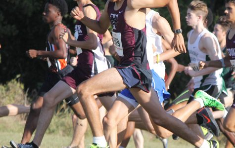 Two Athletes Advance to Cross Country Regionals