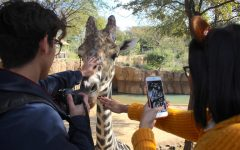 On October 31, the art classes took a field trip to the Dallas Zoo for an assignment.