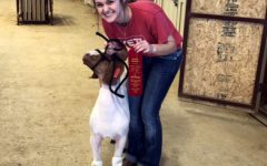 Johnson, Pig Place Second In Fort Worth Stock Show and Rodeo