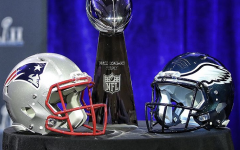 Patriots Predicted to Win Super Bowl LII