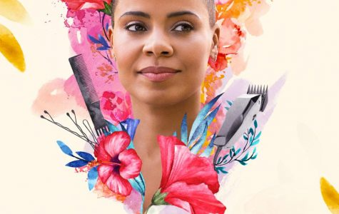 Nappily Ever After Disappoints Novel Fans